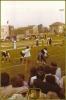 Palio di Mortara 1981 e 1982